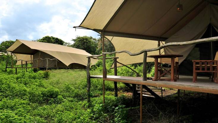 Spend your babymoon in a luxury safari tent on Santa Cruz Island.