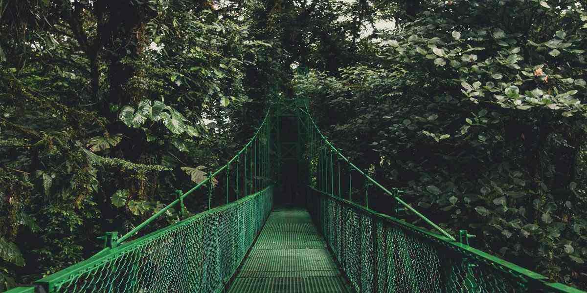 walkway to costa rica nature resorts