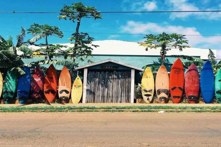 surf boards on a wall perfect for things to do in Hawaii on vacation