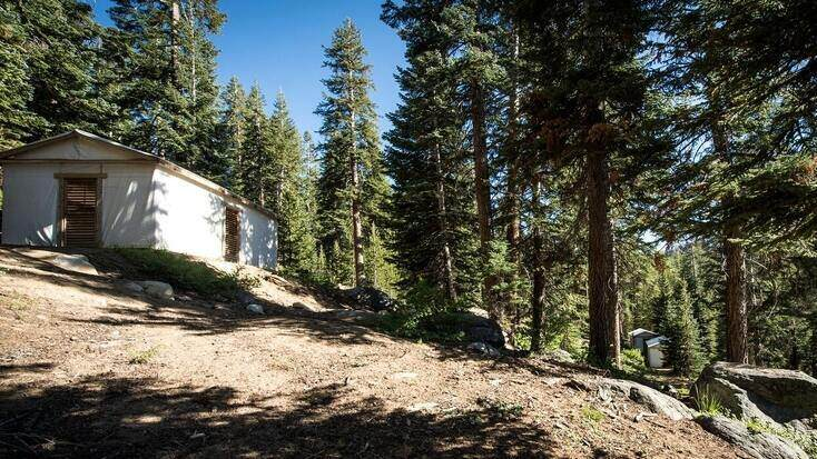 A luxury tent rental in the Sequoia National Park