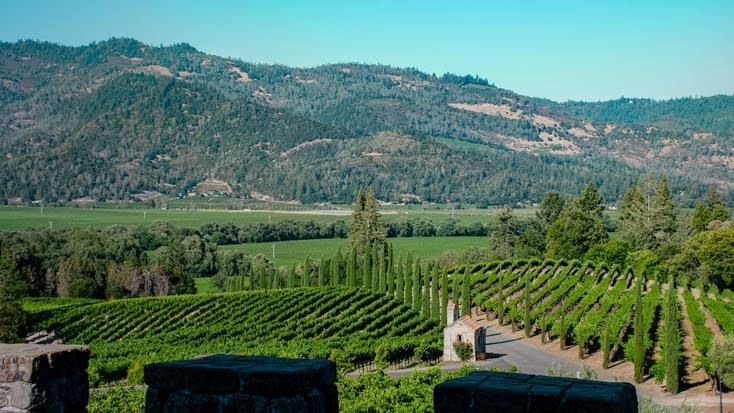Views from Castello di Amorosa, Calistoga: vacations in California