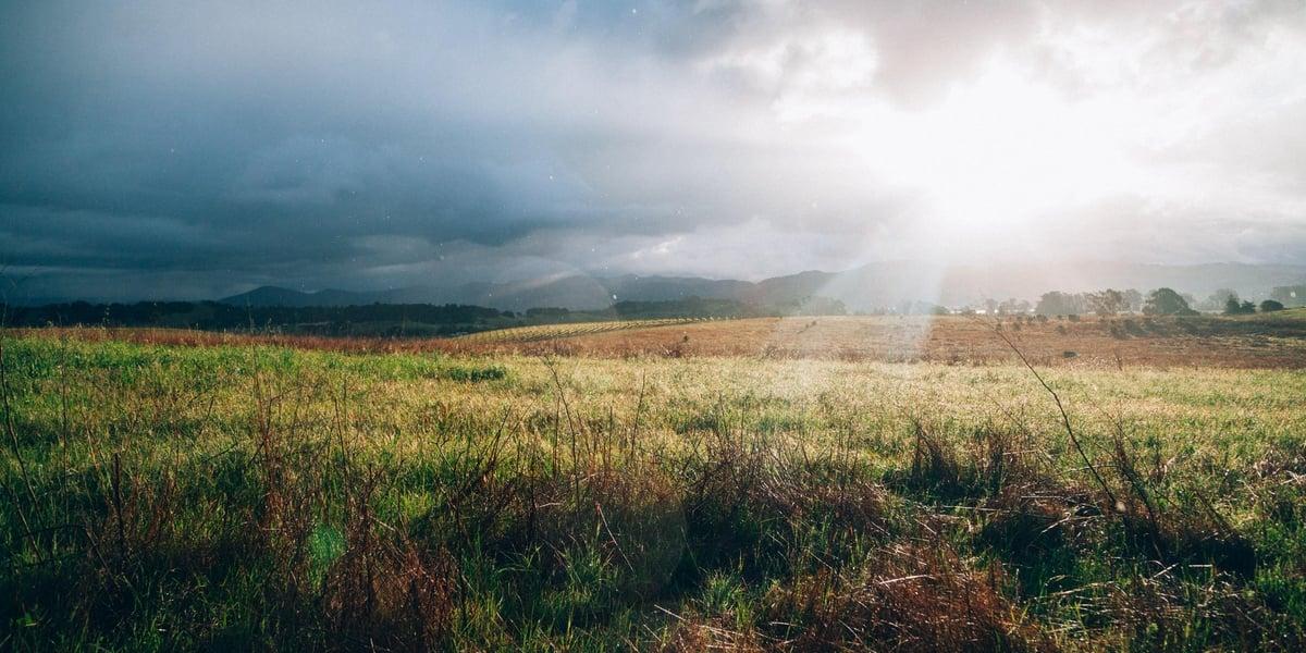 Beautiful views for Napa Valley vacation: ideas 2021