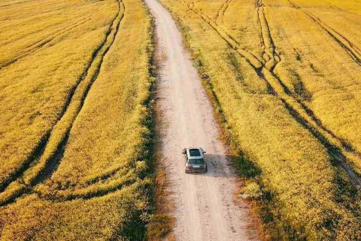 A car driving through a field on an East Coast road trip.