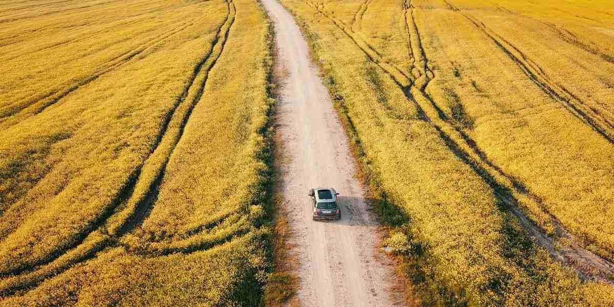 A car driving through a field on an East Coast road trip.