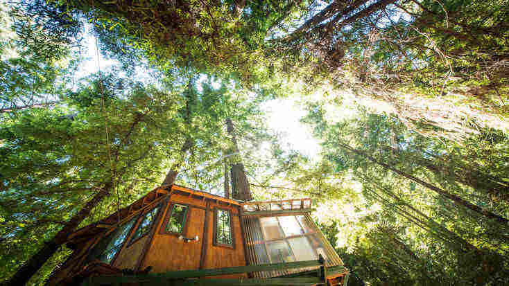 treehouse washington for travel gifts for her