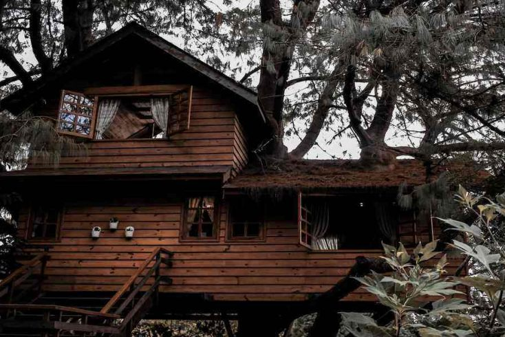 cool tree houses SoCal and one of the best places to stay in Southern California 2020