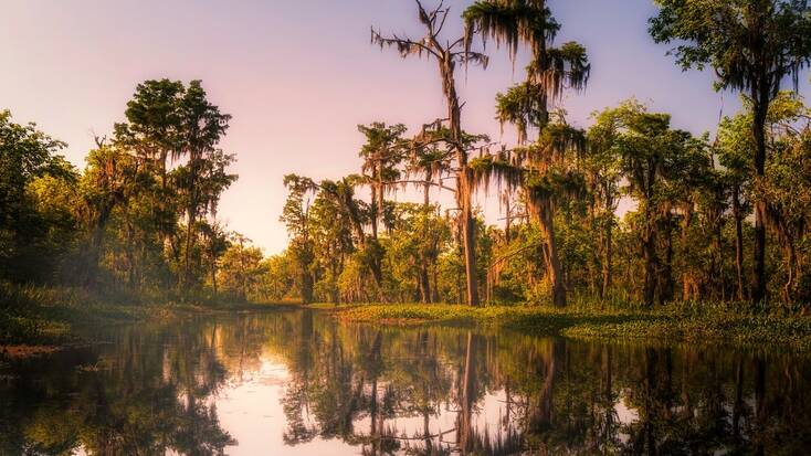 Spend President's Day Weekend in Louisiana