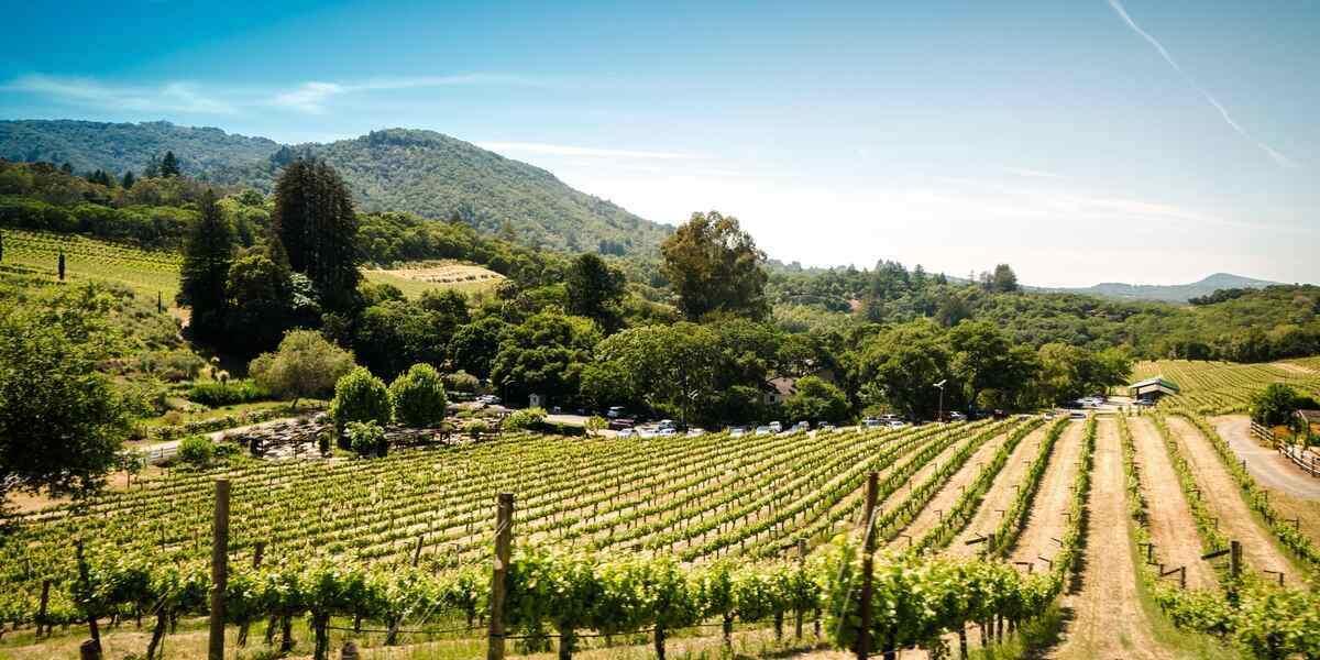Romantic Getaways in Sonoma County, California: Couples ...