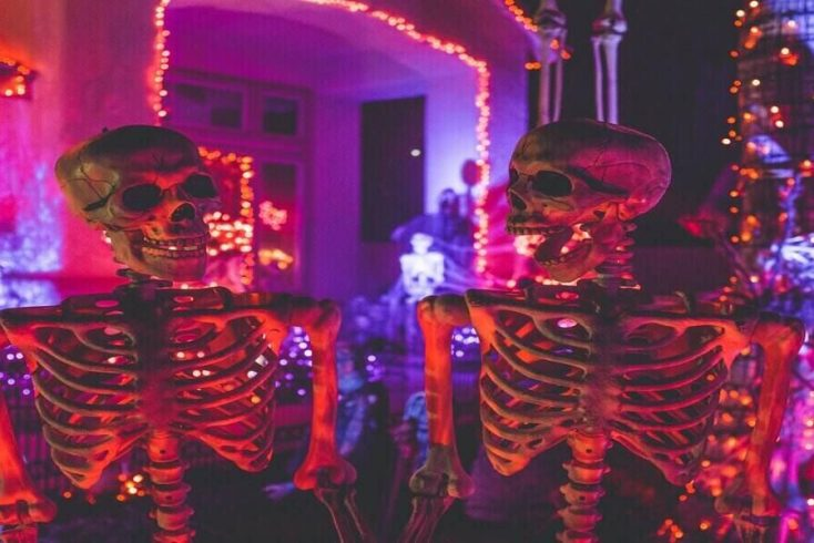 Halloween skeletons on display for next halloween getaways