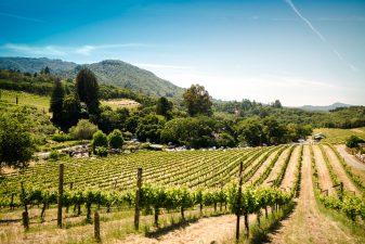 top yarra valley wineries in australia