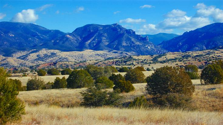 Gila National Forest is one of the best places to go hiking in New Mexico
