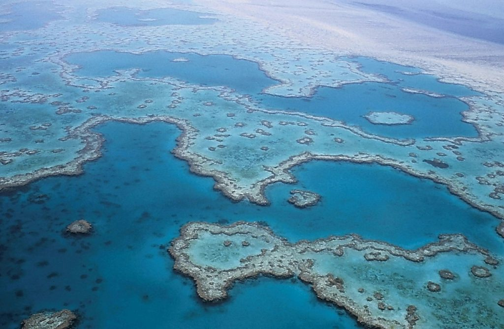 Explore the Great Barrier Reef when you stay near Cairns for some December sun!