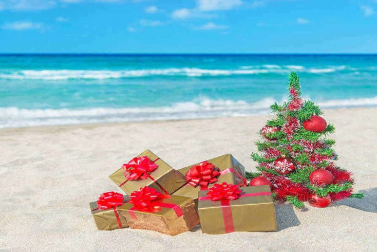 Enjoy some Christmas sun with a tropical Christmas!