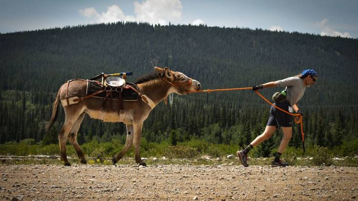 The pack burro race in Fairplay, Colorado, is one of the world's more unusual marathons