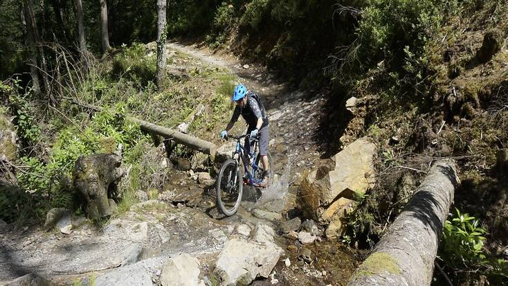 Go mountain biking in Coed y Brenin