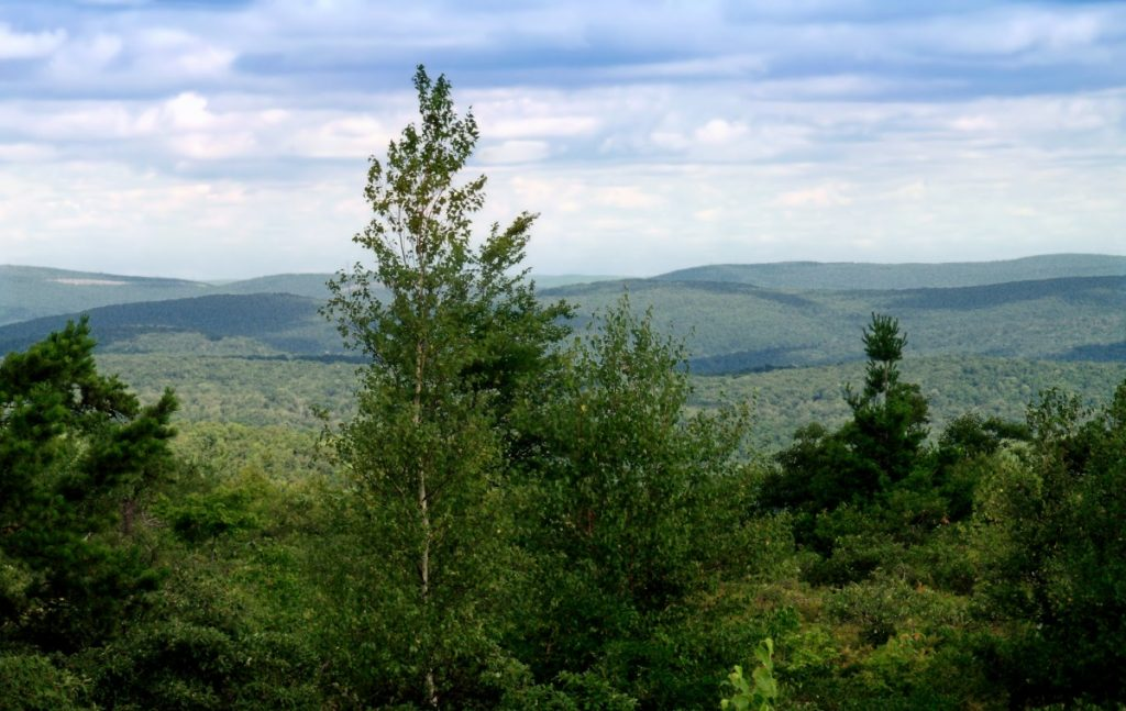 A view over forests in the Pocono Mountains