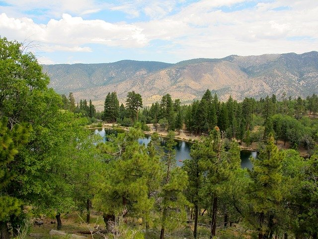 Things to do in San Bernardino National Forest