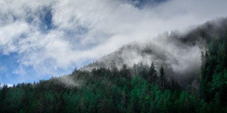 Explore Jordan River, BC In 2020: British Columbia Top Destinations
