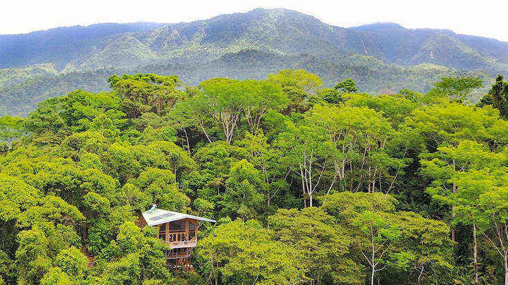 Stay in a Costa Rica tree house, a unique honeymoon destination