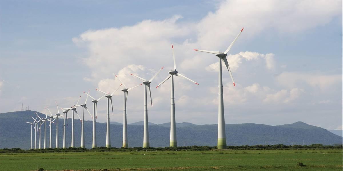 An eco-friendly wind farm