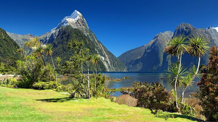 Mountains, fjords, and stunning fauna all await in New Zealand