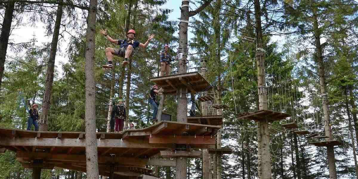 A woodland adventure park