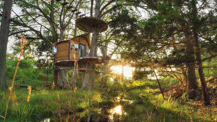 Stay in one of our tree house rentals and discover the best barbecue ideas in Austin, Texas