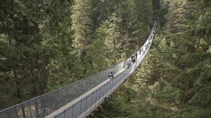 Visit the Capilano Suspension Bridge. Unusual things to do on Victoria Day 2020