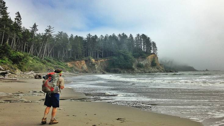 Explore forests and coastline in Olympic National Park, Washington State
