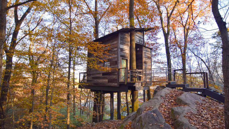 Another one of Joy's stunning tree houses in woodland