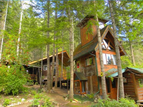 Stay in a unique tree house rental near Shuswap Lake