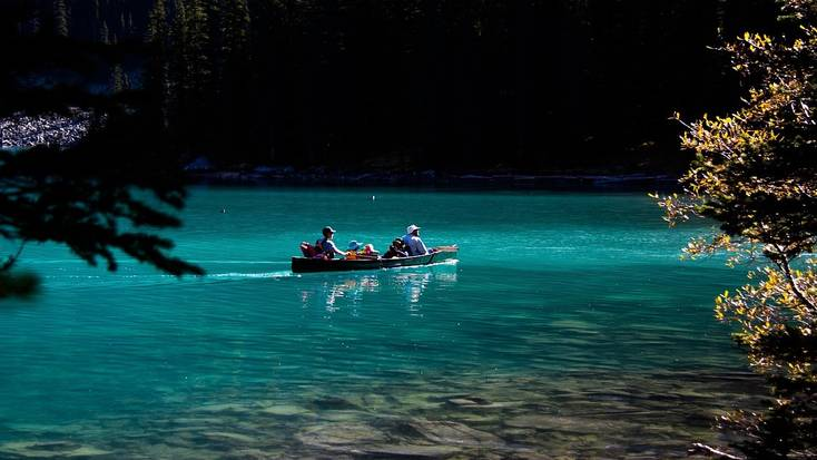 Head to Banff National Park for a dog-friendly vacation