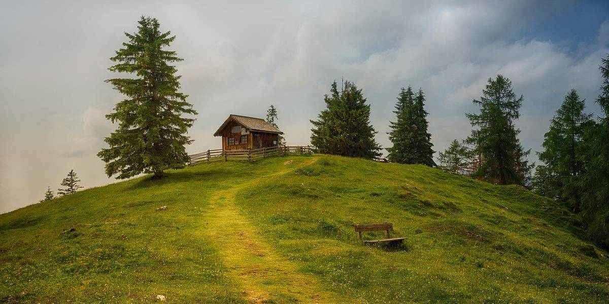 Top cabin rentals