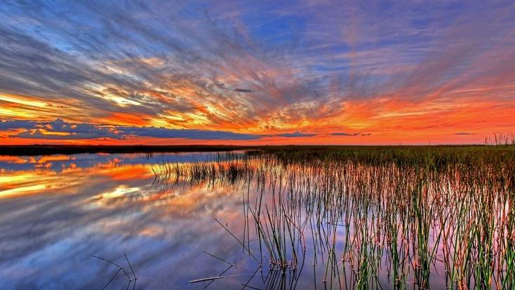 Enjoy exploring the Everglades on a Florida vacation