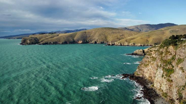 Go swimming with dolphins in Akaroa, New Zealand