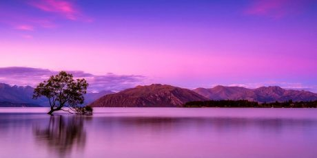 The Best Holidays in New Zealand for a staycation in 2020
