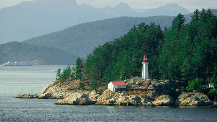 Go dolphin watching in Vancouver, BC