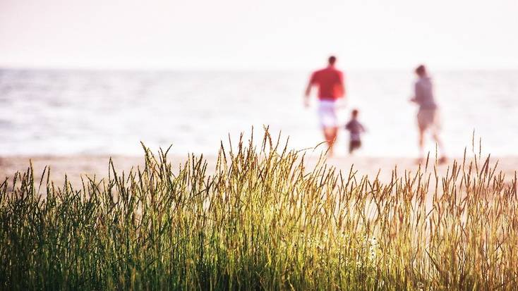 plan a family trip for end of summer vacations