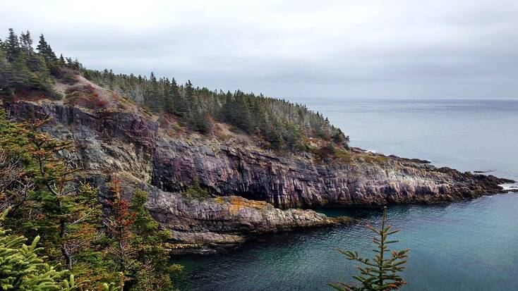 The rugged Newfoundland coastline