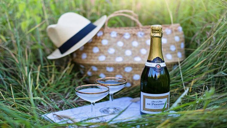 Plan a social distanced date with a picnic in the park