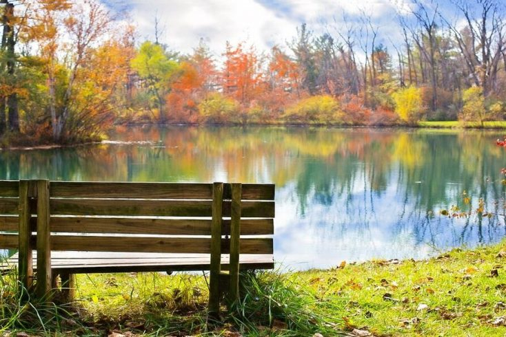 Bench overlooking Lake during Fall