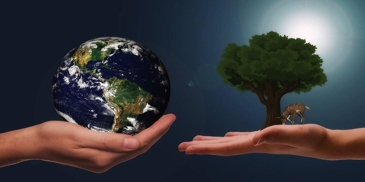 Celebrate World Habitat Day