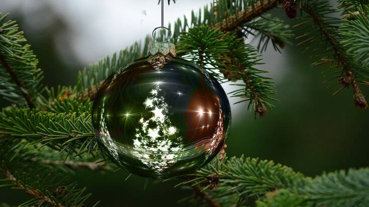 A Christmas ornament in a Christmas tree