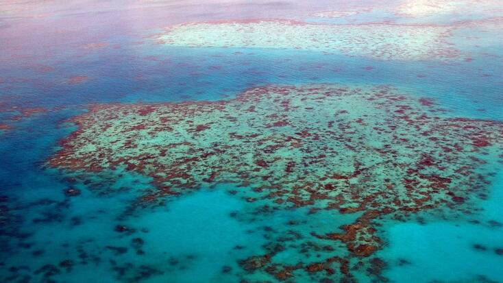 Best beaches in Australia to see the Great Barrier Reef