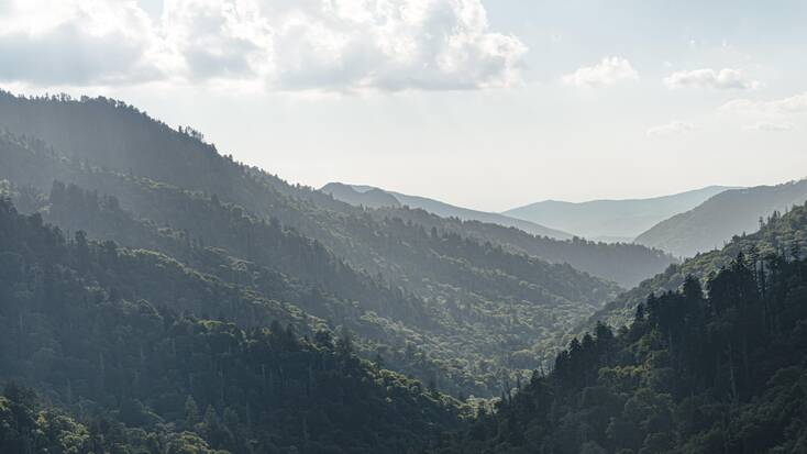 A view over forests in the Great Smoky Mountains