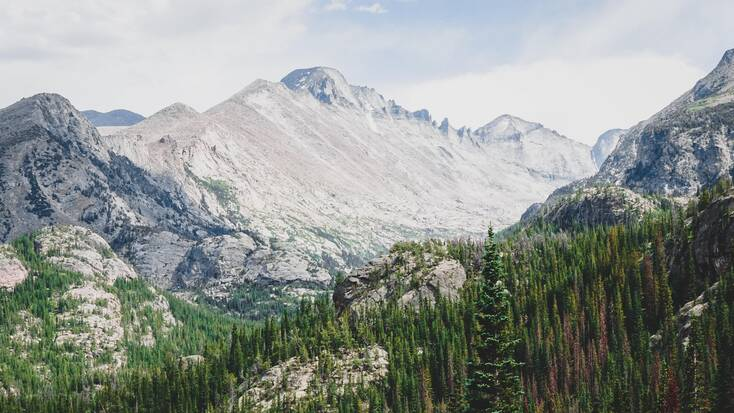 A view of forests and mountains in the Rockies