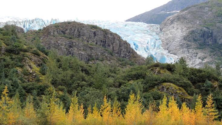 The Herbert Glacier in Tongass, Alaska