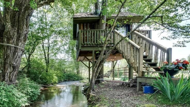 A tree house in North Carolina