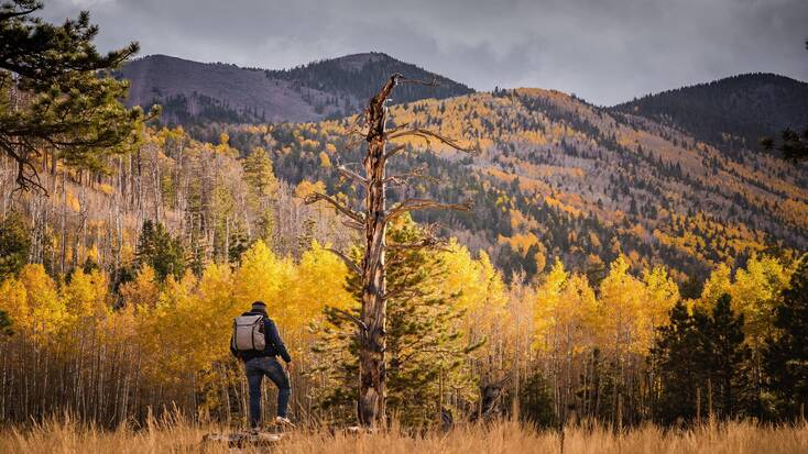 Someone hiking in the Flagstaff Mountains