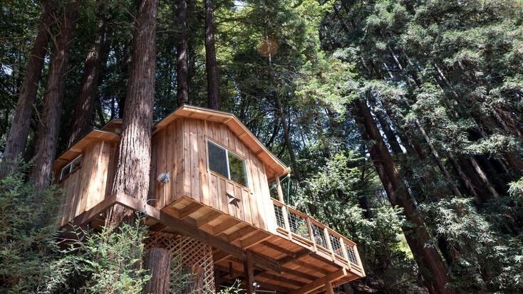 Tree house rental near San Francisco